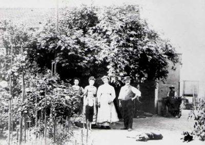 Blumenhalle Boehme in Dresden Ost Striesen Jahr 1881