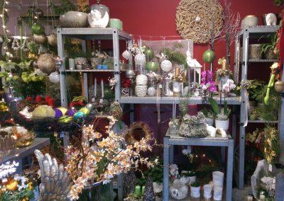Weihnachtsschuck-Herbstdekoration-Planzen-Blumen-Blumenhalle-Boehme-Dresden-Ost-Tolkewitz