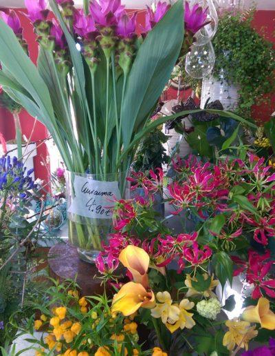 frische-Blumen-Blumenstrauss-Blumenladen-boehme-dresden-ost