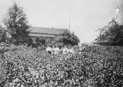 Historie-1881-Mitarbeiter-Blumenhalle-Boehme-Dresden-Tolkewitz